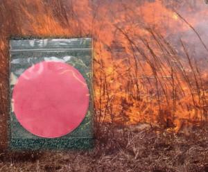 Smoke Seed Primer :  Disque pour traitement des semences à la fumée
